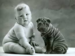 Cute Dog Photo: Wrinkly Shar Pei Puppy with a Baby | Gracie Lu ...